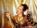 Цирковые животные - заказ артиста