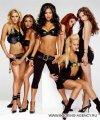 Pussycat Dolls - заказ артиста