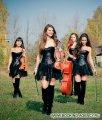 Violin Group Dolls - заказ артиста